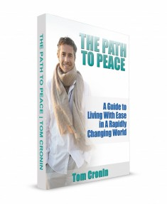 Path To Peace Cover 3D