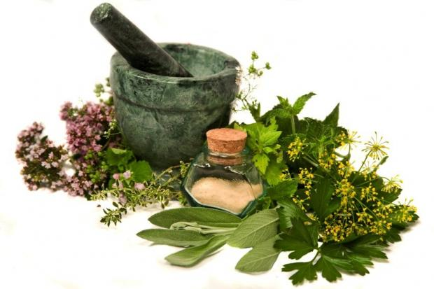 My Top 5 Herbs To Improve Your life